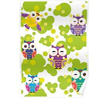 Colourful owls Poster