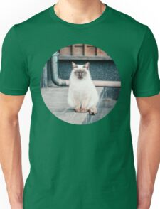 Cat, Aso, Temple Unisex T-Shirt