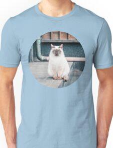 Cat, Aso, Temple Unisex T-Shirt