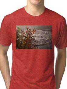 Riverbank Color -  Tri-blend T-Shirt