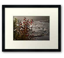 Riverbank Color -  Framed Print