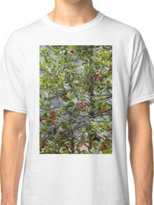 red berries in the garden Classic T-Shirt