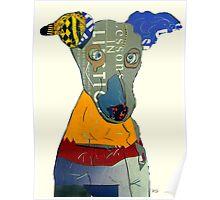 kacy the greyhound Poster