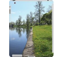 river and green field iPad Case/Skin