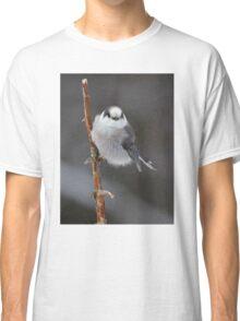 Gray Jay - Algonquin Park Classic T-Shirt