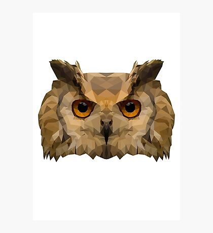Geometric Owl Face Photographic Print