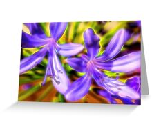 African Lily Flower Greeting Card