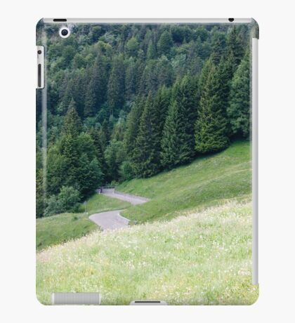 mountain landscape iPad Case/Skin