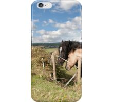 pair of Irish horses and ancient round tower iPhone Case/Skin