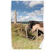 pair of Irish horses and ancient round tower Poster