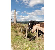 pair of Irish horses and ancient round tower Photographic Print