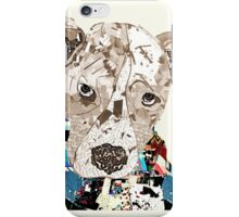 a pit bull day  iPhone Case/Skin