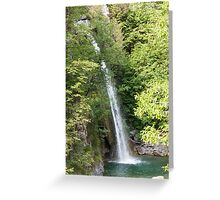 stream and waterfall  in the forest Greeting Card