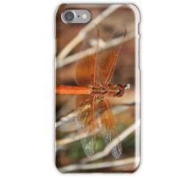 Red Dragonfly Wings iPhone Case/Skin