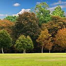 Autumnal Colours by Country  Pursuits