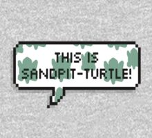 This is sandpit-turtle! by SirensAwoken