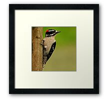 LOOKOUT  POST Framed Print