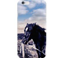 pair of wild Irish horses and ancient round tower iPhone Case/Skin