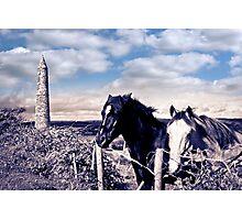 pair of wild Irish horses and ancient round tower Photographic Print