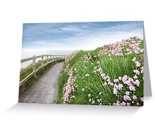 pink wild flowers along a cliff walk path Greeting Card