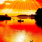 red hot silhouette of boat and birds at sunset by morrbyte