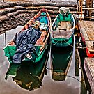 Docked Fishing Boats by Paul Wolf