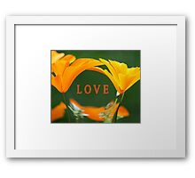LOVE (with Golden Poppies) Framed Print