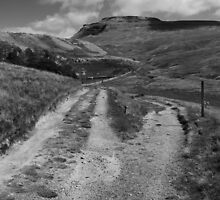 All Roads Lead to Ingleborough by Stephen Knowles
