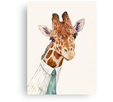Male Giraffe Canvas Print