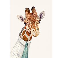 Male Giraffe Photographic Print