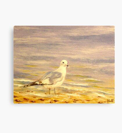 Gully Canvas Print