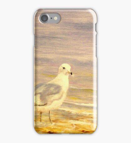 Gully iPhone Case/Skin
