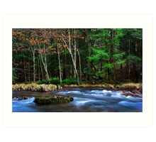 Kettle Creek in Late November Art Print