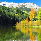 Reflections of fall. by Linda Sparks