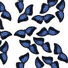 Butterfly Pattern by Jeremy Stout