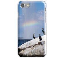 Cormorants, Rainbow, Fountain iPhone Case/Skin