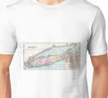 Vintage Map of Long Island (1880)  Unisex T-Shirt