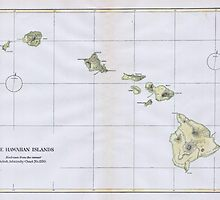 Vintage Map of Hawaii (1883) by BravuraMedia