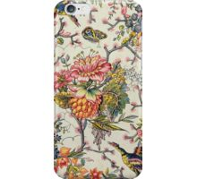 Indian model (w/c on paper) iPhone Case/Skin
