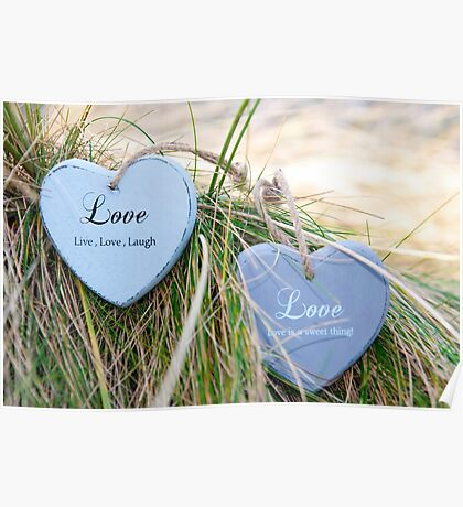 two love hearts on grassy dunes Poster