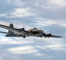 B-17 Flying Fortress by © Steve H Clark Photography