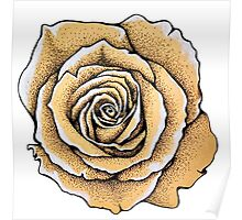 Beautiful rose flower Poster