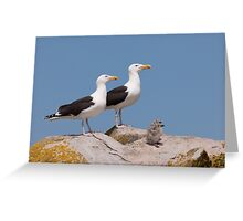 The Family Stands Proudly, Saltee Island, County Wexford, Ireland Greeting Card
