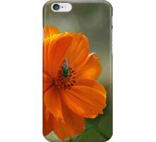 A Green Bee iPhone Case/Skin