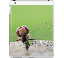 Common Darter iPad Case/Skin