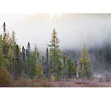 Autumn frost comes to Algonquin Park Photographic Print