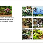 All Glorious Gardens Bicycle Challenge Results by Marilyn Cornwell