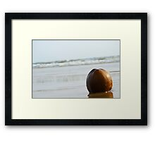 The Lonely Coconut Framed Print