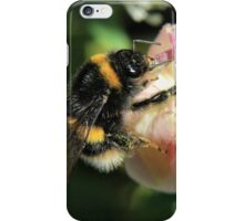 Bumble on a bud iPhone Case/Skin