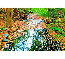 Stream Dressed For Fall Photographic Print
